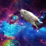 intergalactic-kitty avatar