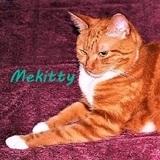 mmMekitty avatar